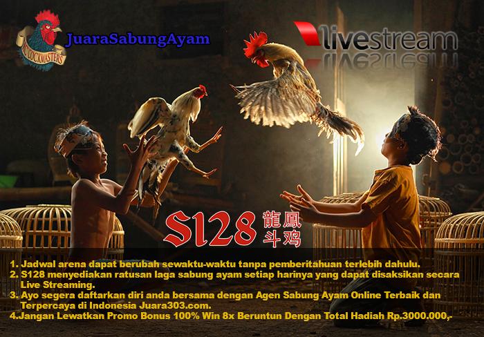 Resmi Jadwal Sabung Ayam S128, 10 Desember 2016