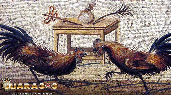 Sejarah Sabung Ayam di Beberapa Negara