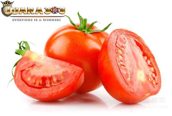 Tomat Dapat Menjadikan Ayam Aduan Menjadi Super!