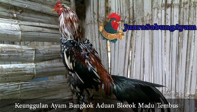 ayam blorok madu