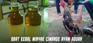 Obat Kebal Minyak Cimande Ayam Aduan