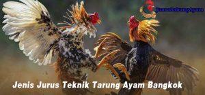 Jenis Jurus Teknik Tarung Ayam Bangkok