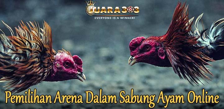 Pemilihan Arena Dalam Sabung Ayam Online