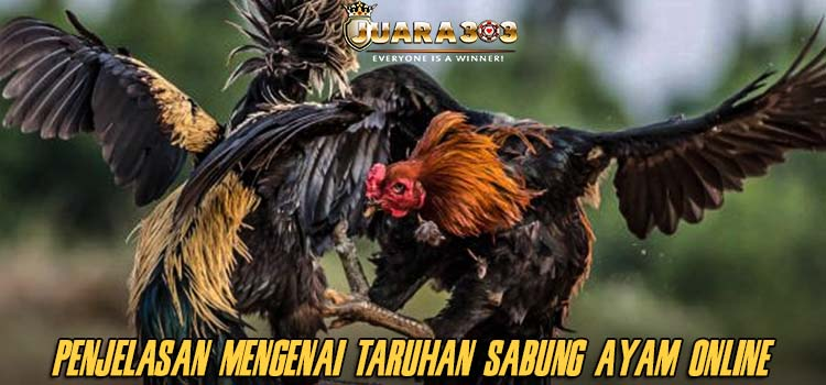Penjelasan Mengenai Taruhan Sabung Ayam Online