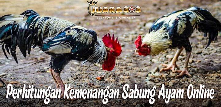 Perhitungan Kemenangan Sabung Ayam Online