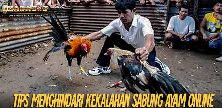Tips Menghindari Kekalahan Sabung Ayam Online